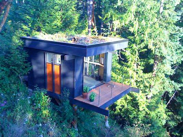 Treehouse-Office