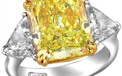 beauty-of-a-thousand-daffodils-larrys-yellow-diamond-collection