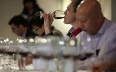 Wine-tasting-judge-Nicolas-Carre-468x312